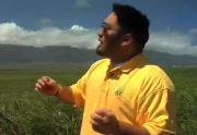 Visit To Maui Brand Cane Sugars
