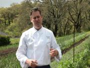 Spring in the Garden: An Update from Executive Chef Todd Knoll (The Journey Blog 4.9.10)