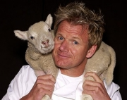 Gordon Ramsay the cursing chef