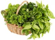 Know how to store fresh herbs most effectively for a better flavor