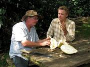 Bill Pullman in a documentary on some of the rarest fruits of the world.