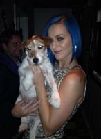 Katy Perry with the Oscar-winning dog of the movie 'The Artist'