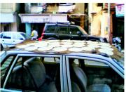 Drying Papad on a car roof