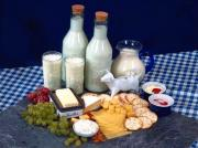 Food with lactose for children