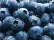 Blueberry Capsules — Blueberry Pills
