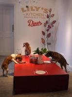 Lilly's Kitchen- A dog restaurant