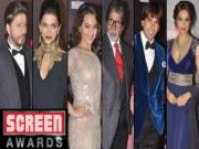 Life Ok Screen Awards Live & Exclusive 25th January 2014