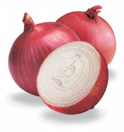 Egyptian oath on onions