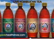 Do Kombucha Products Contain Alcohol?