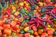 The hotness of the pepper is determined in scoville units