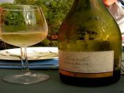SlurpVision in Burgundy: Chablis
