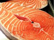 Will the FDA Pass GMO Salmon