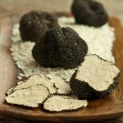 Fresh truffle mushroom is a prized delicacy in many countries