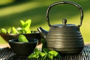 Green tea promotes hair growth