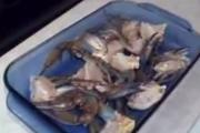 Jersey Blue Claw Crabs - Part 3 : Preparing to Bake