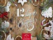12 Days of Christmas Recipes -Savannah