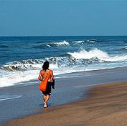 Goa Beach Diet-1