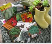 Finding the Joy of Growing Your Own Food