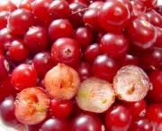 Foods For Swollen Lymph Nodes — Red Berries