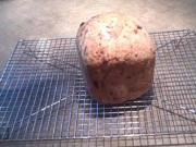 Holiday Cinnamon Oatmeal Raisin Bread