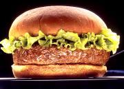 Terrific Burgers