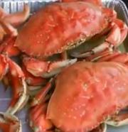 Humboldt Dungeness Crab
