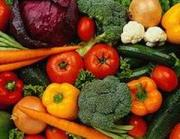 Cancer Foods to Eat
