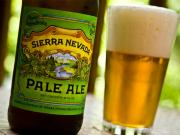 Sierra Navada Pale Ale Beer - An Overview