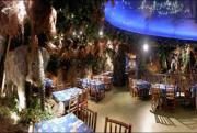 Rainforest Cafe - London