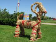 Yule Goat is made of straw and is a part of Christmas tradition