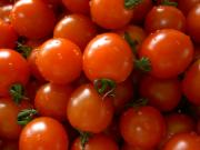 Tomatoes can be frozen, preserved in oil, dried, or kept in cool storage to preserve them.