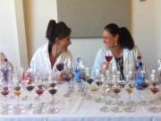Women Winemakers: Shauna Rosenblum & Angelina Mondavi