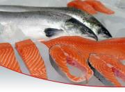 How to clean salmon thoroughly.