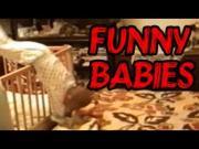 Funny Baby Videos