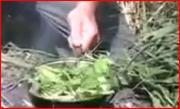 Vietnam Vegetarian Stir Fry