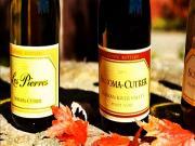 Cellar Angels Interviews Sonoma Cutrer Winemaker Mick Schroeter
