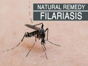 Home Remedy For Filariasis