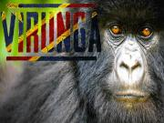 Virunga Congo Documentary On Nature