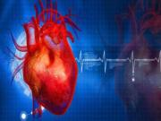 Thelip New Heart Disease Drug