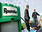 Monsanto Roundup Cancer Link Explored