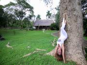 Hollow Back Handstands Yoga With Dashama