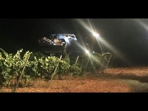 Watch A Night Wine Harvest 1020230 By Potluckvideo