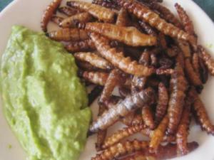 Worm Quesadillas All The Rage In Guadalajara
