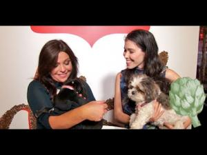 Rachael Rays Tips For A Dogfriendly Party 1018617 By Potluckvideo