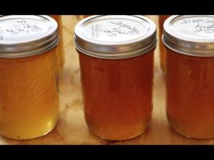 Best Grape Fruit Jelly 1014952 By Cherylshomecooking