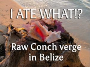 Strange Foods Conch