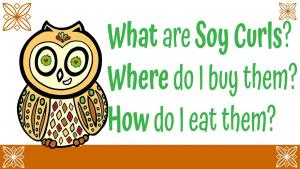 What Are Soy Curls Where Do I Get Them 1019572 By Simpledailyrecipes