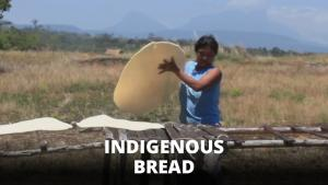 Indigenous Cooking How To Make Casabe Bread 1013923 By Zoomintv
