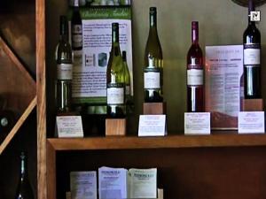 Fall Wine Favorites