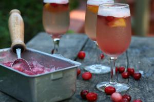 Us Cranberries Sorbet Sangria By Coryanne Ettiene